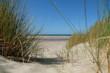 Dünenlandschaft Nordsee