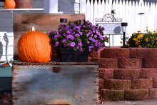 Wooden Crate With Fall Pumpkin And Purple Mum Flower Sit Outside A Farm House In The Country