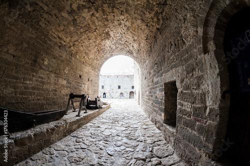 Fotografie, Obraz  Baba Vida, a medieval fortress in Vidin, in northwestern Bulgaria