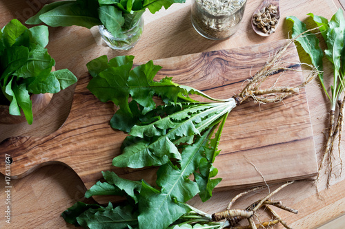 Photo  Whole dandelion plant including root on a wooden table