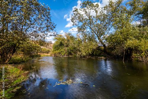 Plakat Wczesny krajobraz jesieni. Dzika rzeka płynąca wzdłuż brzegów, gęsto zarośnięta krzewami i drzewami.