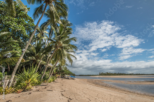Foto op Canvas Tropical strand Tropical island beach with coconut trees