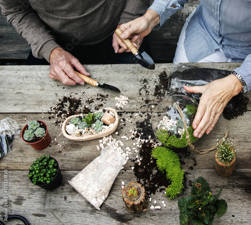 Photo  Couple making a terrarium with miniature plants