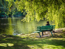 Woman Sitting On A Bench Overl...