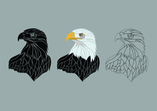 Eagle Illustration Black Colored And Line Art Collection