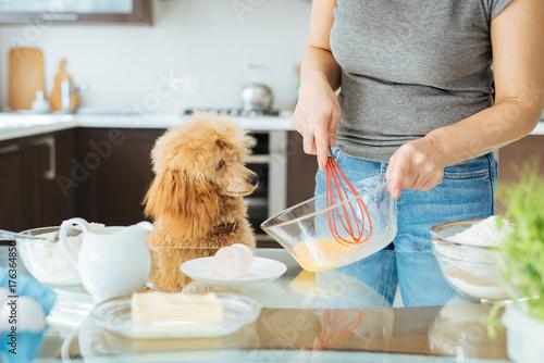 Plakat Młoda kobieta z psem robi śniadanie.