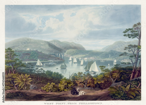 Vintage colorful illustration of a natural landscape. Plants on foreground and a blue lake on background.