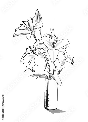 Lilies Branch In Vase Pencil Sketch Style Graphic Image Of Flowers Bouquet Vector Illustration Buy This Stock Vector And Explore Similar Vectors At Adobe Stock Adobe Stock