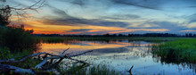 Late Sunset In The Marshes