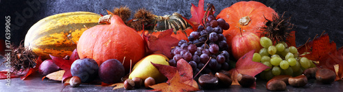 sezonowe-owoce-i-warzywa-na-szarym-tle