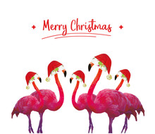 Flamingo Merry Christmas
