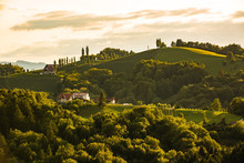 Countryside In Southern Styria