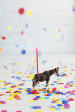 Colourful Confetti Falling On Okapi Toy Decorated With Birthday Candle