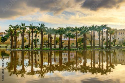 Obrazy na płótnie Canvas Jardin Jnan Sbil, Royal Garden in Fes. Morroco