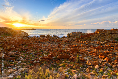Garden Poster Brown South Australian Coast at Sunset