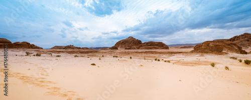 Fototapeta Panorama Piasek pustyni Synaj, Egipt, Afryka