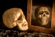 Human Skull And Reflection Of The Skull In The Mirror
