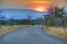 Track Through Natal Sand Forest, Mkuze, Zululand, Kwazulu Natal