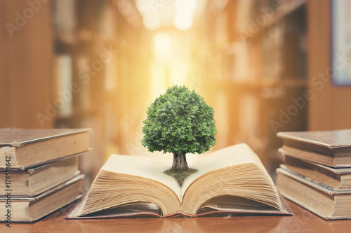 Obraz World philosophy day concept with tree of knowledge planting on opening old big book in library full with textbook, stack piles of text archive and blur aisle of bookshelves in school study class room - fototapety do salonu