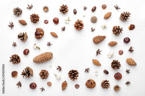 Fotografie, Obraz  Autumn composition, frame made of pine cones, acorns and chestnuts