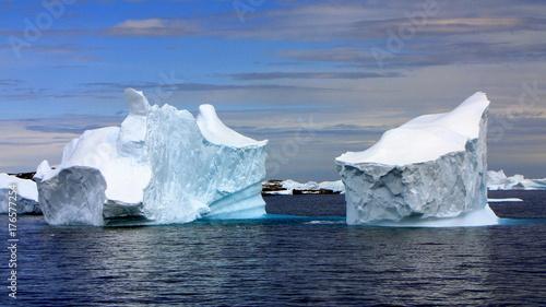 Foto op Aluminium Arctica Antarctica