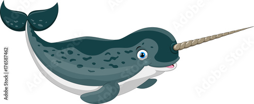 Vector illustration of cartoon narwhal isolated on white background Tableau sur Toile