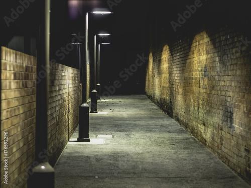 Photo Alley Nights