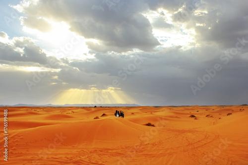 Sunset in the Sahara desert. Africa. Morocco.
