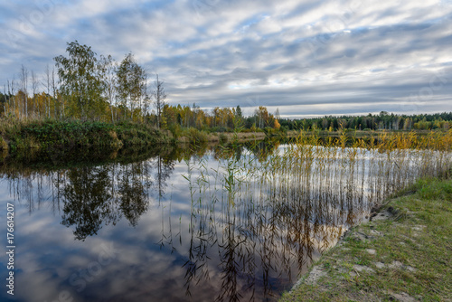 Spoed Foto op Canvas Khaki autumn colored trees on the shore of lake with reflections in water
