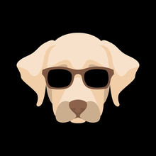 Dog Face Sunglasses Vector Ill...