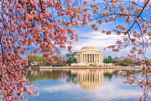 Poster Lieux connus d Amérique Washington DC Spring