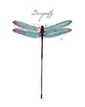 Watercolor Drawing Dragonfly. ...