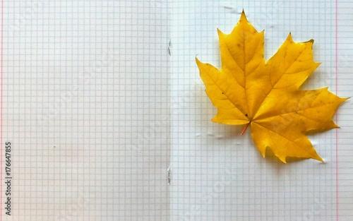 Осенние листья на тетради для записи Wallpaper Mural