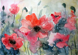 Abstract flower background a watercolor hand drawn - 176651053