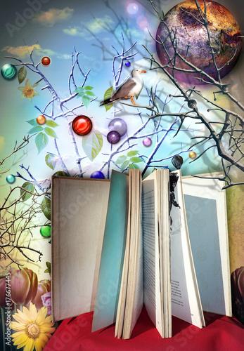 Foto op Aluminium Imagination Libro aperto e illustrato delle favole,leggere per viaggiare con l'immaginazione e la fantasia