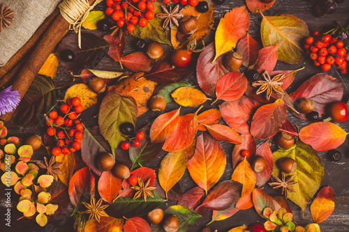Autumn leaves, nuts, berries and spices on the rustic background. Shallow depth of field.
