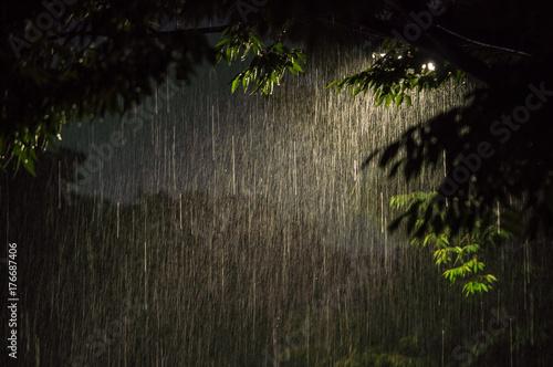 фотография 街灯と雨