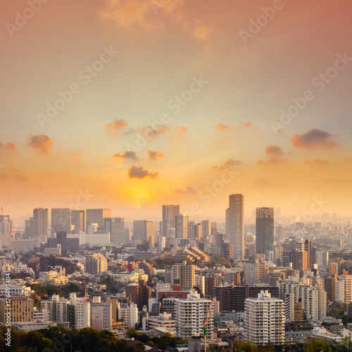 Canvas Prints New York Cityscape of Tokyo city, japan. Aerial view of modern office building and downtown skyscraper of tokyo with clear sky background. Tokyo is metropolis and center of new asia's modern business