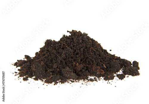 Fotografía  Pile heap of soil humus isolated on white background