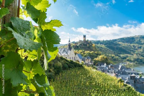 Fotografía  Weinbau - Urlaub an der Mosel zwischen Weinbergen