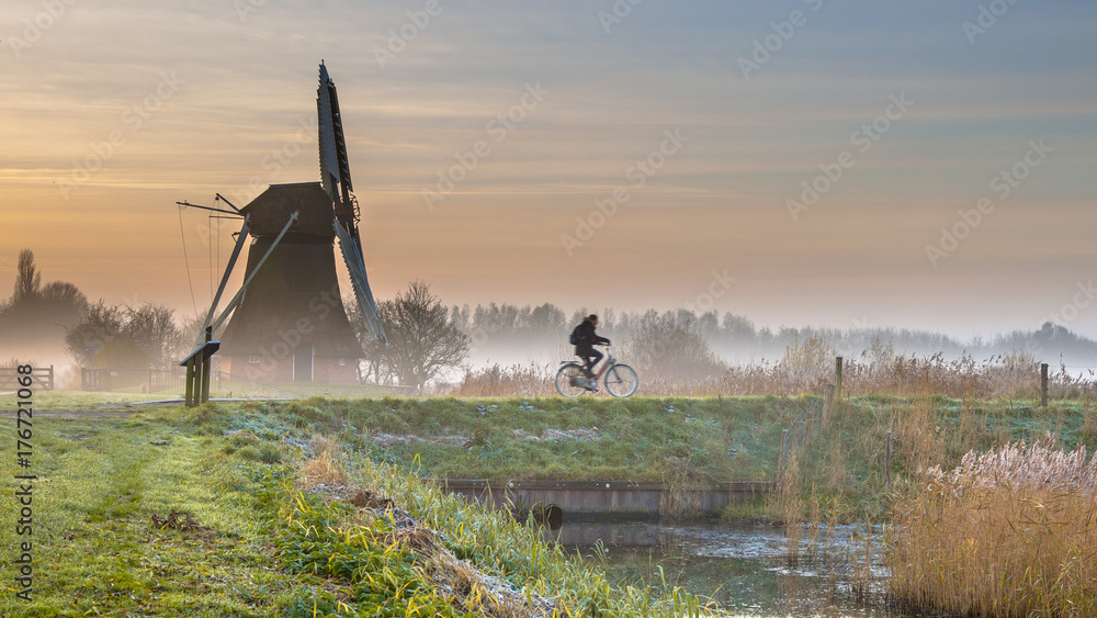 Cyclist in early morning landscape