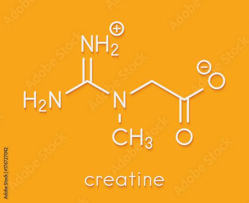 Fotografia  Creatine molecule