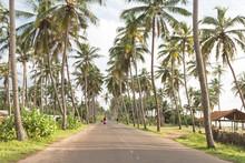 Coastal Highway, Marawila, Sri...