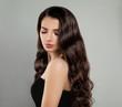 Brunette Beauty. Pretty Model Girl with Long Hair, Fashion Portrait