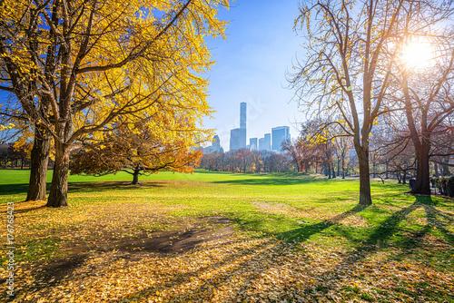 Plakat Centrala park w Miasto Nowy Jork przy pogodnym jesień dniem, usa