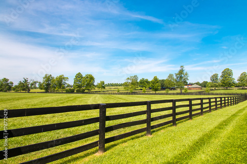 Obraz na plátně Black wooden fence  and green pastures of horse farms