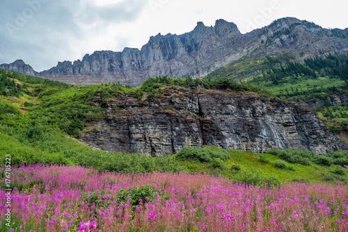 Fotografia, Obraz  Glacier National Park