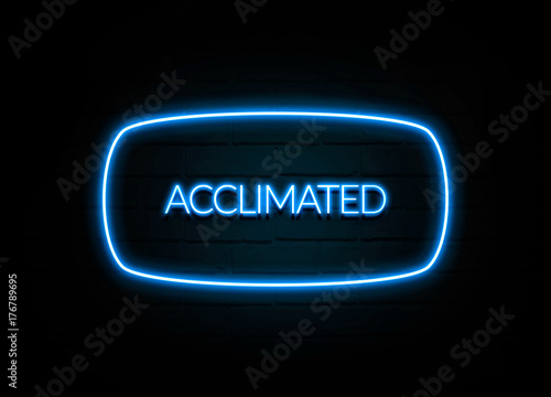 Acclimated  - colorful Neon Sign on brickwall Wallpaper Mural