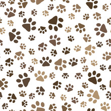 Seamless Pattern With Dog Foot...
