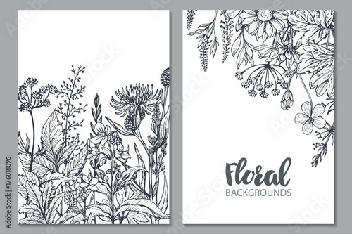 Fototapeta Floral backgrounds with hand drawn herbs and wildflowers. obraz